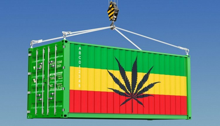 Image of of a shipping container with cannabis icon