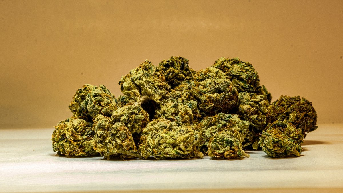 Close up of a pile of marijuana buds straight on product shot. The buds are bright green with red/orange hairs. Pineapple Express.