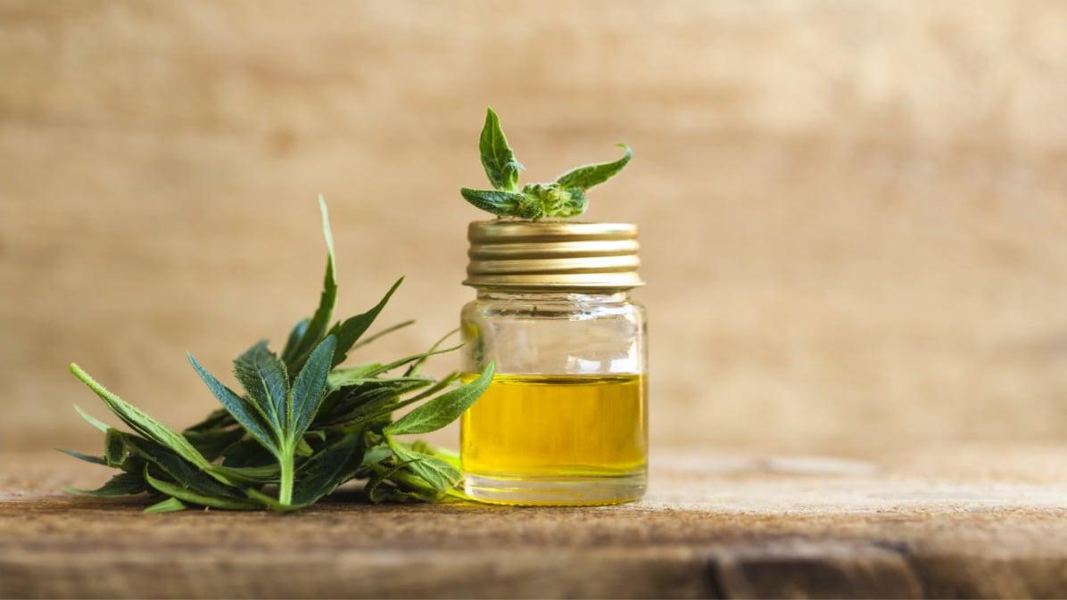 cbd extract oil in a glass jar next to a hemp leaf
