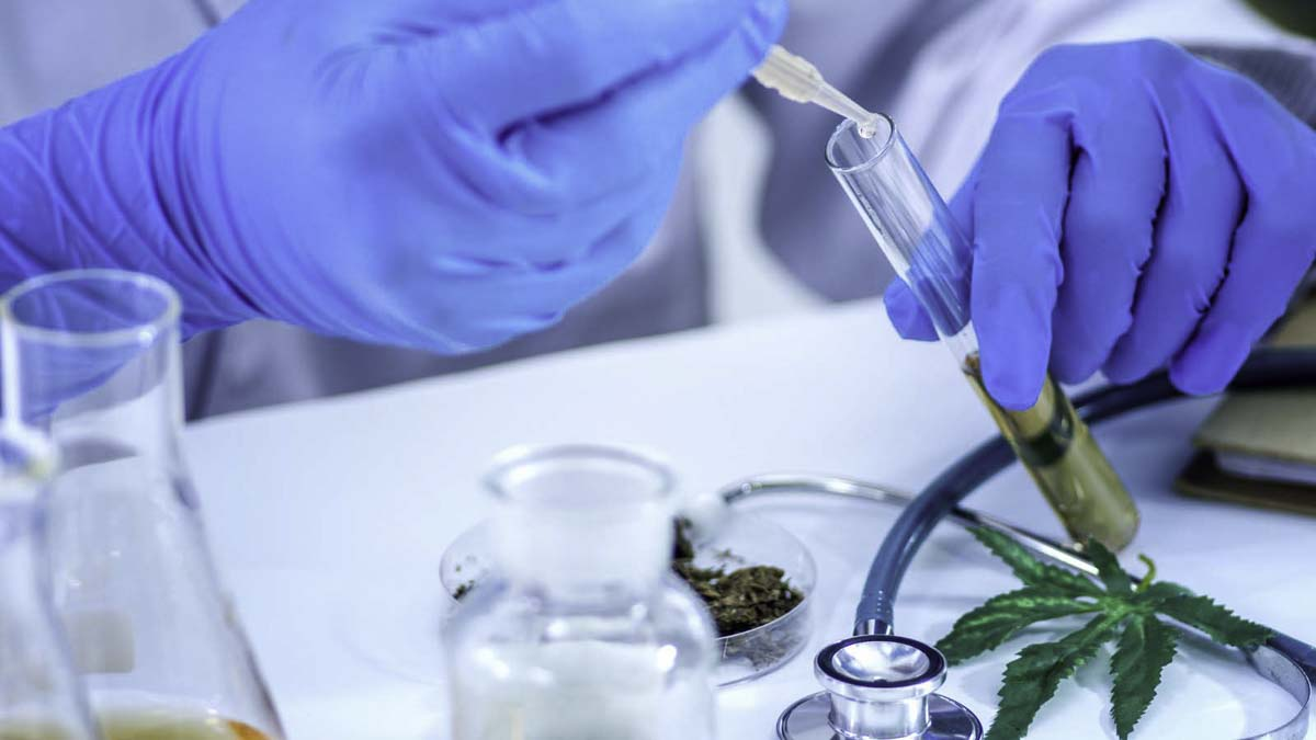 Medical researcher extracting CBD oil from a glass tube in the lab
