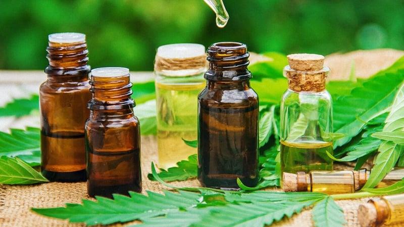 CBD Oil in Bottles with Hemp Plants