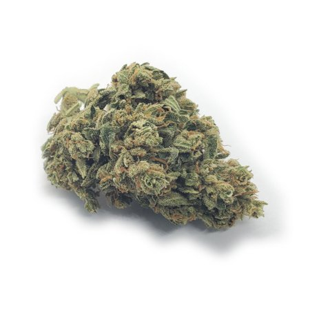 BubbleGum Marijuana Bud on white background